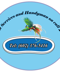 Pool Services and Handyman