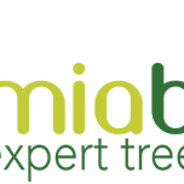 Miabella Experts Tree Service Inc.